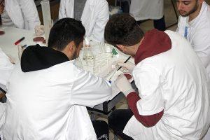 4_Práctica muestras en taller dietética INTER