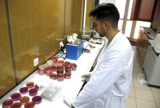 6_Práctica muestras en taller dietética INTER