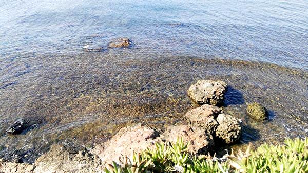 Playa Les Rotes (Denia)