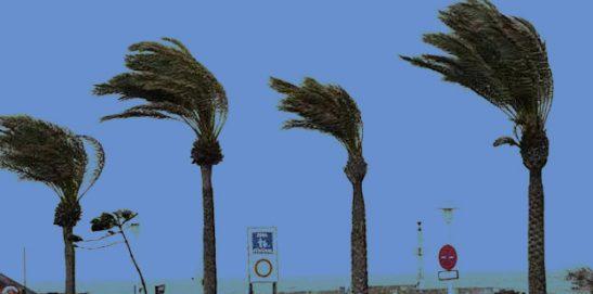 Alerta por fuertes vientos